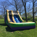 20ft Green Monster Slide